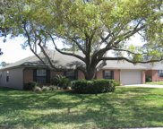 265 DOWNY BRANCH CT, Jacksonville image