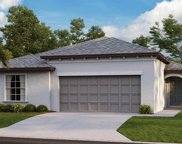 11919 Wild Daffodil Court, Riverview image
