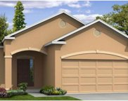 4656 Lindever Lane, Palmetto image