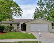 1118 Carbone Way, Apopka image