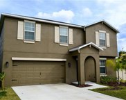 10312 Boggy Moss Dr, Riverview image