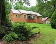 1891 Cook Springs Rd, Pell City image