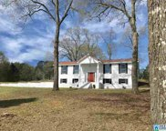 345 Wilderness Ln, Alabaster image