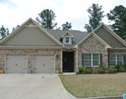 18 Waterford Pl, Trussville image