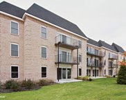 5201 Carriageway Drive Unit 311, Rolling Meadows image