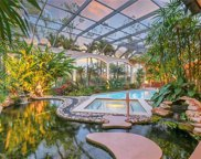 4387 Silver Fox Dr, Naples image