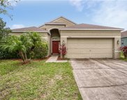 3702 Trapnell Grove Loop, Plant City image