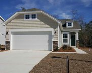 1166 Palm Crossing Dr., Little River image