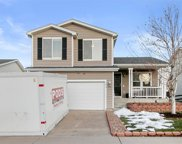 7816 Mule Deer Place, Littleton image