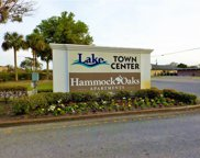 3587 Lake Center Drive Unit 2, Mount Dora image