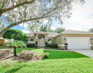 1106 Wineberry Court, Ocoee image