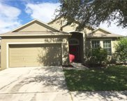 13206 Beechberry Drive, Riverview image