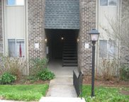 3636 Taliluna Ave Unit 225, Knoxville image