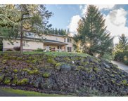 215 GRAY SQUIRREL  CT, Winchester image