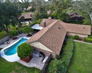 353 DUNSTER CT, Orange Park image