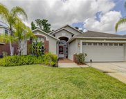 14334 Moon Flower Drive, Tampa image