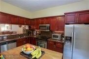 11041 Lighthouse Ct, Tamarac image
