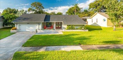 1441 Treetop Drive, Palm Harbor