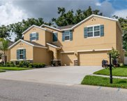 10405 Pleasant Spring Way, Riverview image