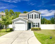 1152 Stoney Falls Blvd, Myrtle Beach image