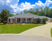 1425 IVY HOLLOW DR, St Johns image