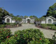 4932 Turtle Creek Trail, Oldsmar image