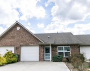 2744 Waters Place Drive, Maryville image