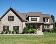 7314 Magnolia Valley Dr, Eagleville image