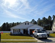 272 Haley Brooke Dr, Conway image