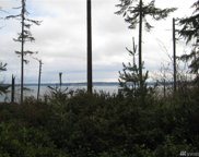 9807 104th Ave, Anderson Island image