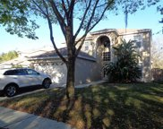 13417 Fawn Springs Drive, Tampa image