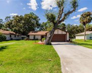 17321 Tallulah Falls RD, North Fort Myers image