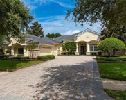 913 Skye Lane, Palm Harbor image