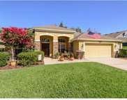 1542 Tawnyberry Court, Trinity image