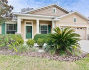 15838 Starling Water Drive, Lithia image