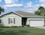 16344 Blooming Cherry Drive, Groveland image