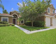 3003 Silver Leaf Court, Kissimmee image