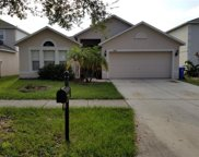 10409 Fly Fishing Street, Riverview image