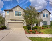 10530 Mistflower Lane, Tampa image