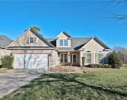 3342  Old Knobbley Oak Drive, Gastonia image