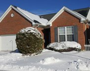 446 Woodlands Ridge  Drive, Delhi Twp image