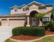 1543 Swamp Rose Lane, Trinity image