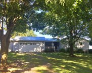 10747 Maple View Heights, Huron image