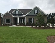 2220 Wood Stork Drive, Conway image