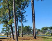 1107 Fiddlehead Way, Myrtle Beach image