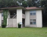 465 CRABAPPLE CT, Orange Park image