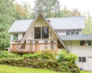 31435 SE Issaquah Fall City Rd, Fall City image
