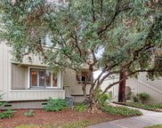 1743 Braddock Ct, San Jose image