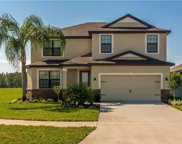 11847 Valhalla Woods Drive, Riverview image