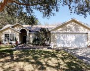 812 Elm Forest Drive, Minneola image